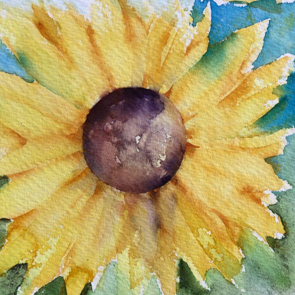 Evelyn Mcewan – MCEWAN Evelyn sunflower@2x