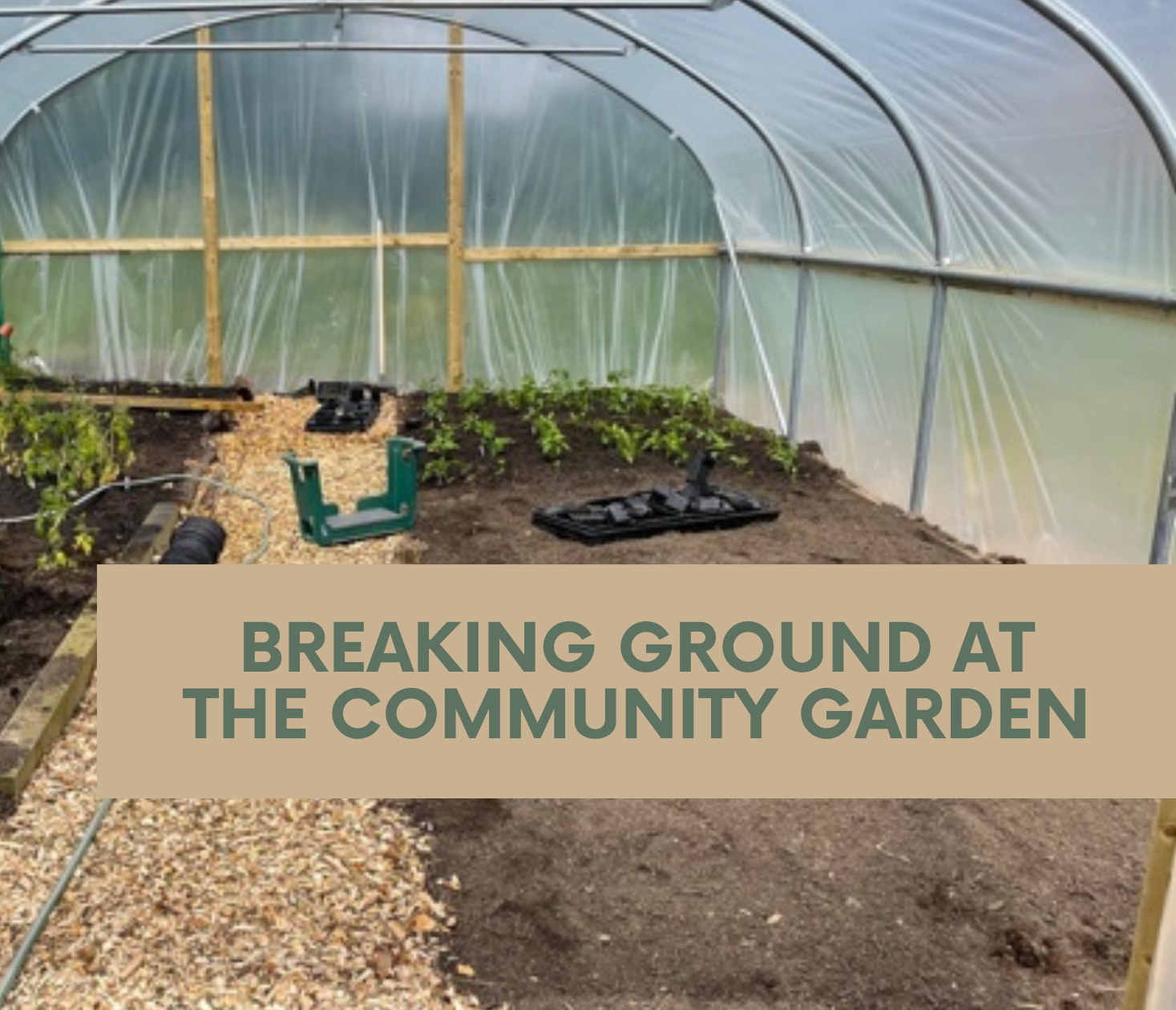 Growing Army is breaking ground at the Community Garden