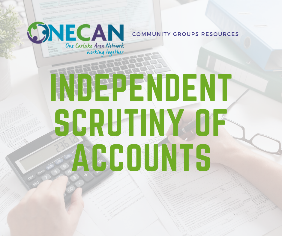 ONECAN Toolkit: Independent scrutiny of accounts